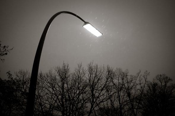 Rain - Photo Didier Laget